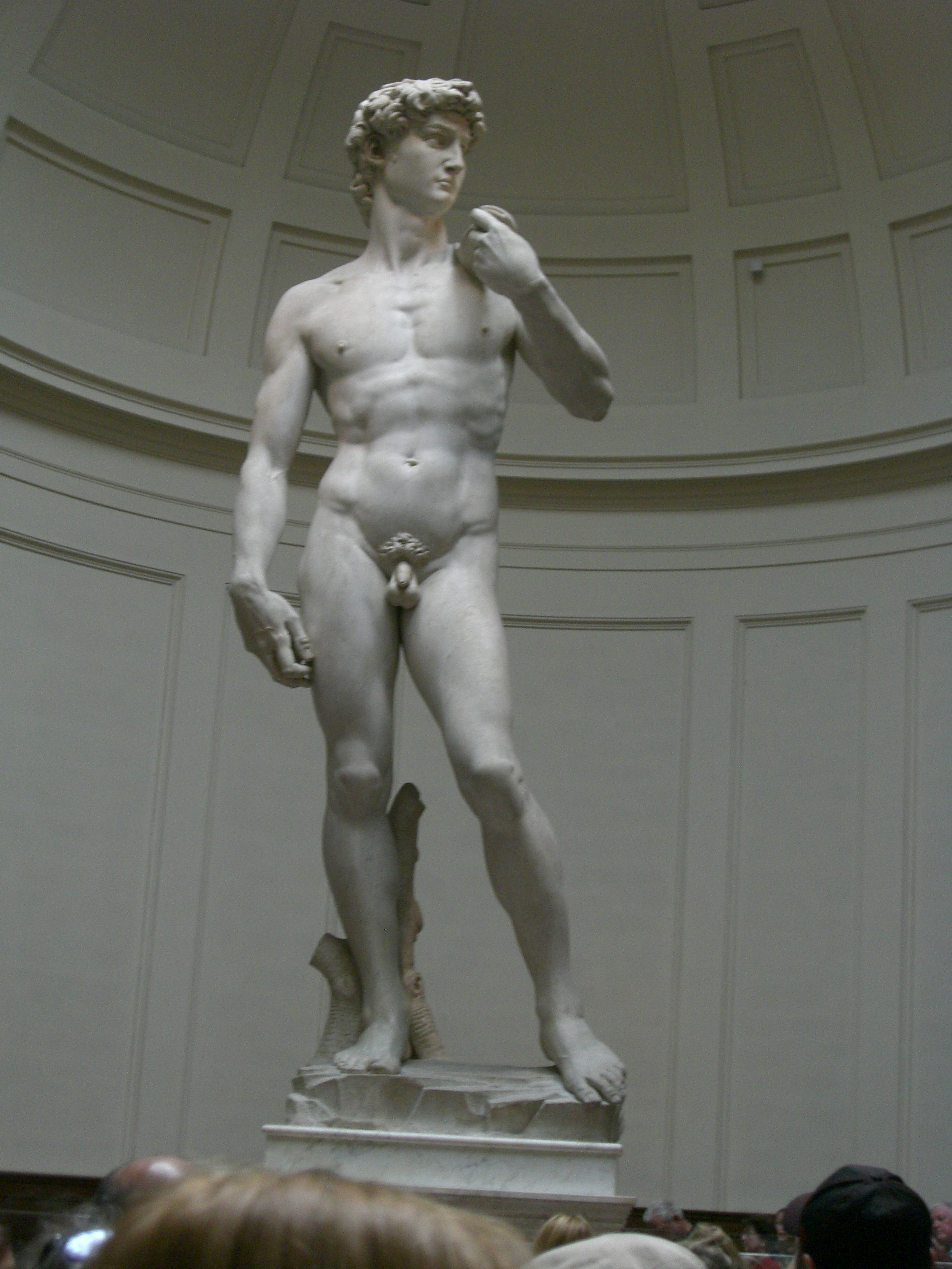 michelangelo s david essay example The three david statues art essay print reference this  this is not an example of the work written by our professional essay statue of david by michelangelo.