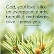 The Love of God is Like an Evergreen