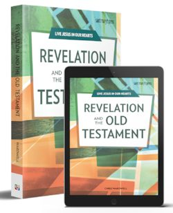 Revelation and the Old Testament Book Bundle