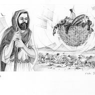 Amos 8:1 Illustration - Basket of Fruit
