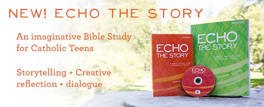 Echo the Story: A Bible Study for Catholic Teens | Saint